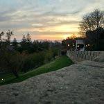 vivo xplay 5 review