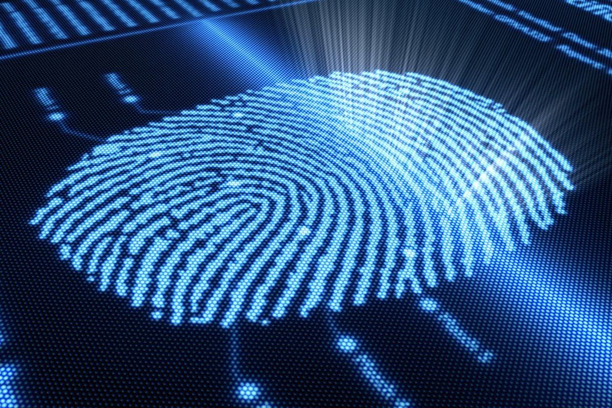on-display-fingerprint