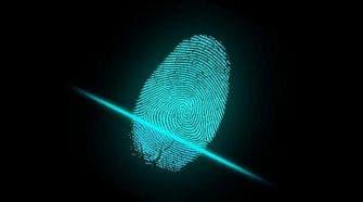 BOE fingerprint