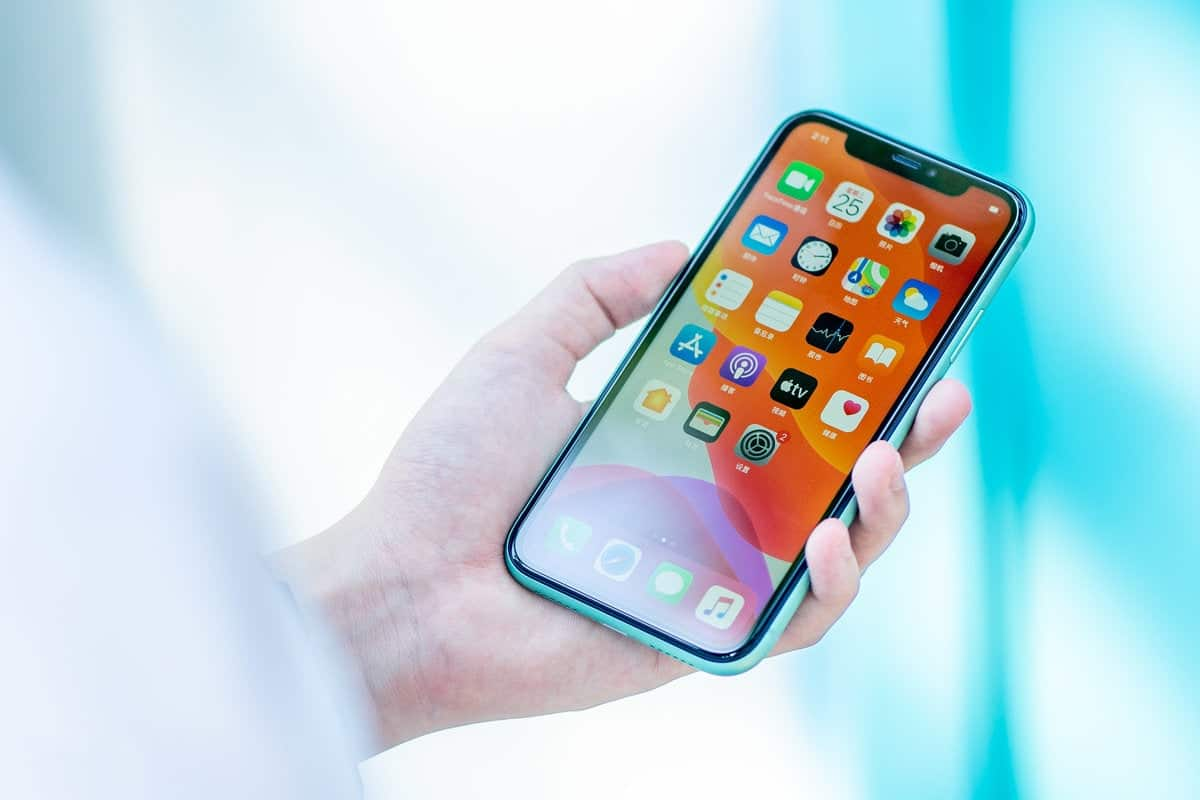 Apple will release iPhone 'with the BIGGEST screen to date in 2020'