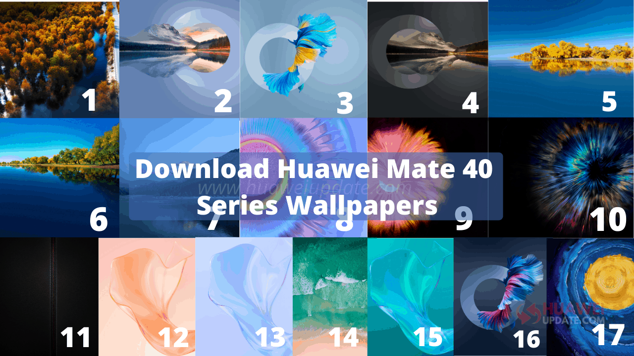 Huawei Mate 40 Pro is the new #1 on DxOMark Mobile