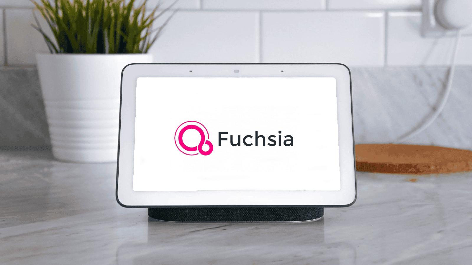 Google Nest Hub Fuchsia