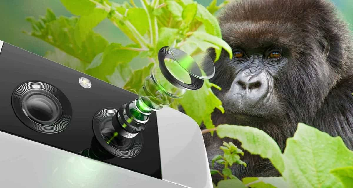 Corning Gorilla Glass DX, Gorilla Glass DX+