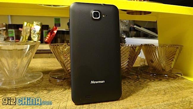newman n2 rear