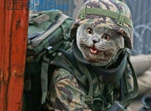 Chinese military pussy