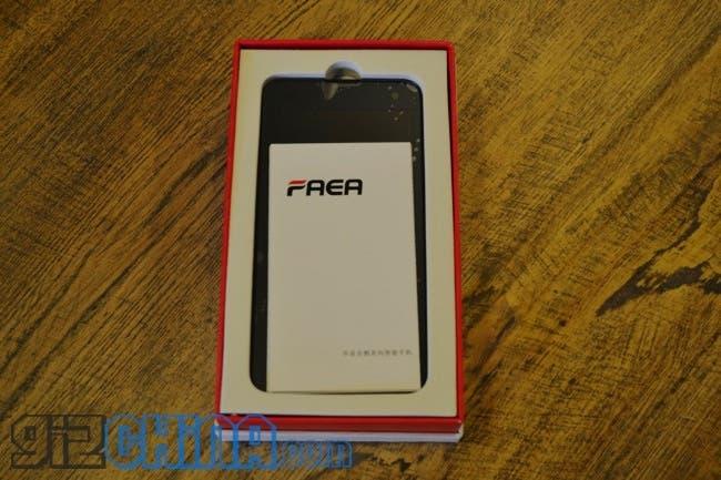 faea f2 in the box